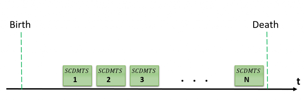 A life timeline as a series of the consecutive SCDMTS
